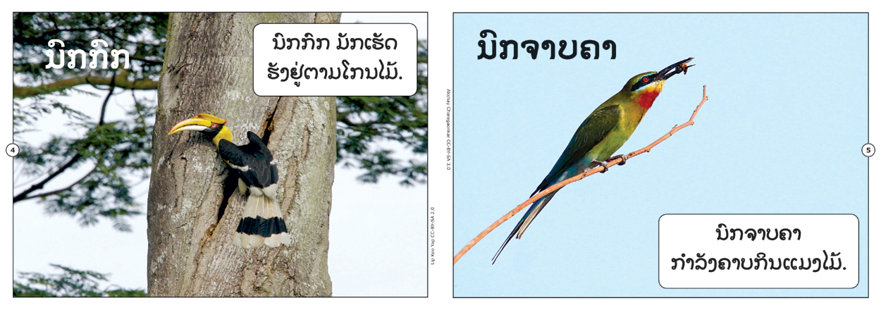sample pages from Birds That I Know, published in Laos by Big Brother Mouse