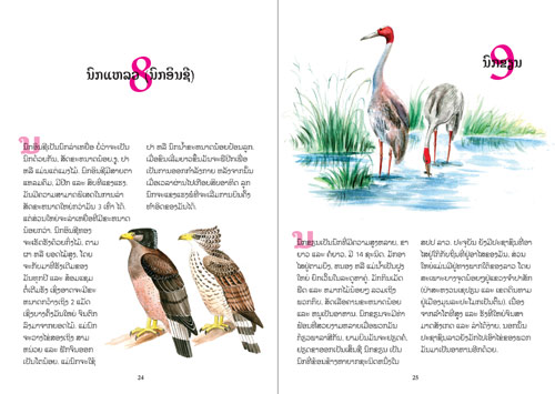 Samples pages from our book: Birds of the World
