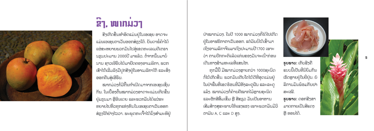 sample pages from Food Origins, published in Laos by Big Brother Mouse